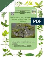 Metodología Para Determinar La Unidad Muestral en Bosques Andinos