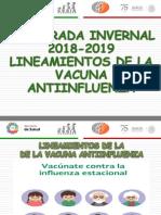03. Temporada Invernal 2018-2019 Antiinfluenza (1)