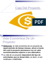 5111351-FLUJO-CAJA-PROYECTO.pdf