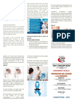 TRIPTICO PREVENCION DEL CANCER A LA PROSTATA.docx
