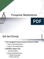 pengantarmetabolisme2009print.ppt