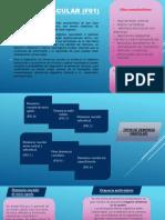Demencia Vascular (f01)