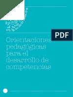orientaciones pedagogicaas