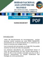 protozoarios 22