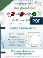 Cinetica Enzimatica Expo