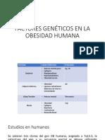Factores Genéticos en La Obesidad Humana