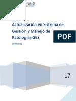 Programa C Ges 2017