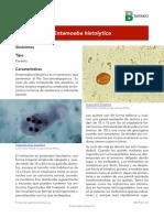 Entamoeba histolytica 2016.pdf