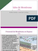 Potenciales de Membrana