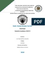 HC Carrión Plantilla - Respiratorio.docx