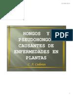5.Pseudohongos y Hongos Introduccion