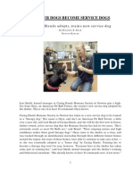 Shelter Dogs as Service Dogs