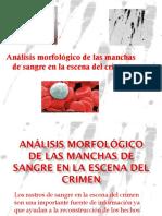 Análisis Morfológico de las manchas de sangre en.pdf