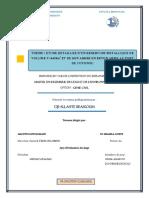 DJI__ALLAHTE_BEASSOUM.pdf