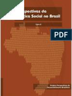 Perspectivas da Política Social no Brasil,Livro 8 , IPEA,2010