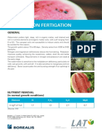 Watermelon Fertigation