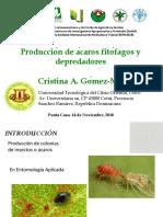 Conferencia Técnica de Cristina Gomez