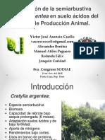 Conferencia técnica de Victor Asencio