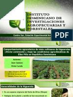 Conferencia técnica de Juan Cedano