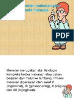 Fisiologi-II-Pertemuan-8.pptx