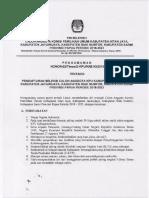 timsel3 Kab Supiori.pdf