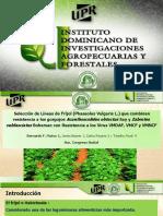Conferencia técnica de Bernardo Mateo