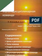Fise Stare Terminala - Ru