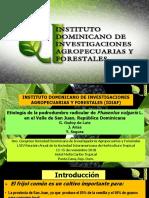 Conferencia técnica de Graciela Godoy