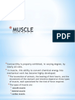 8 - Muscle.pptx