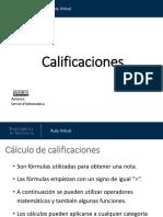 Calificaciones Formulas 1