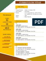 Cv-curriculumvitae by Adigunachannel