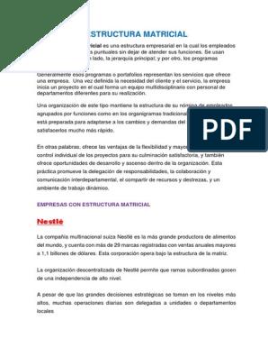 Estructura Matricial Economias Business