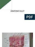 Anatomo Sistem Reproduksi