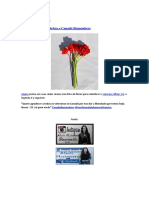 Alanis Morissette Celebra o Canadá Remembers