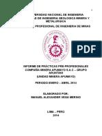 294401501-modelo-de-Informe-Practicas-Profesionales-Apumayo-Final-3.pdf
