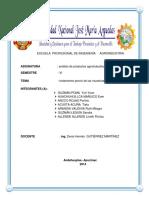 INFORME DE ANALISIS DE PRODUCCTOS AGROINDUSTRIALES.docx