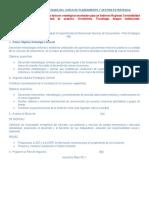 Primera Práctica Calificada Del Curso de Planeamiento y Gestion Estrategica (1)