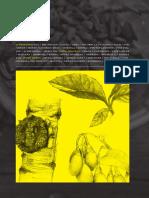 FSFSuperfoodHandbookHIRES.pdf