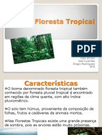Floresta Tropical-Sofia, Diogo, Joel, Inês