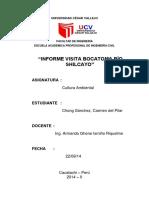Informe Boca Shilcayo