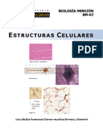 estructuras celulares.pdf
