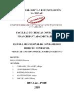 Constitucion de Sociedad Colectiva Derecho Comercial