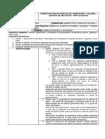 Informe Practica 01 LTCIIG1