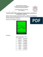 Hidrolisis de RNA y DNA e Identificación de Bases Púricas y Pirimídicas Por Cromatografía en Capa Fina.