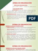 SISTEMA DE ORGANIZACION.pptx