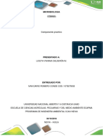 Informe- Microbiologia Ambiental.docx