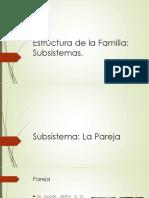 Continuidad y Cambio en La Familia. Factores Intervinientes, Ed. 1 - Mirna García-Méndez