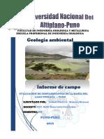 Informe de Geologia Ambiental