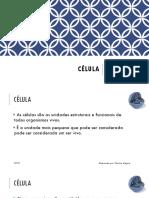 Bio12 Ficha 1 Final