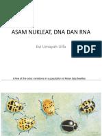 Asam Nukleat_ Dna Dan Rna2012
